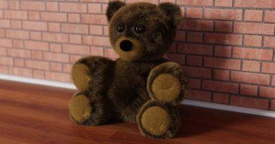 Der Teddy Bär